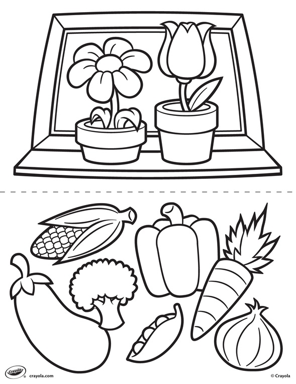 First Pages Flowers And Veggies