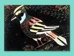 Tropical Birds at Night lesson plan