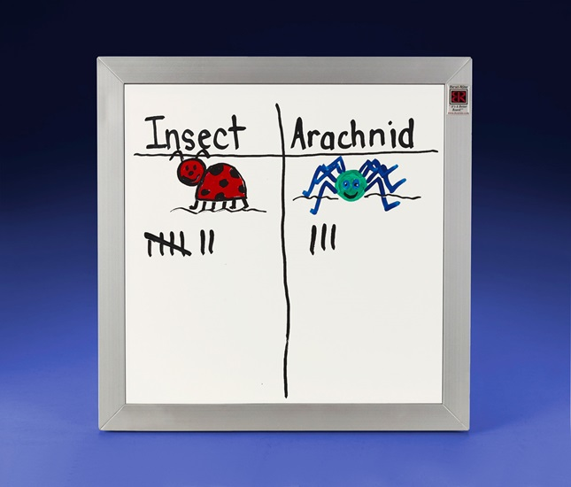 Insect or Arachnid? lesson plan