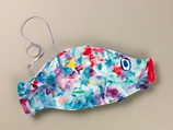 Carp Streamer lesson plan