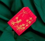 Good Luck in a Red Envelope lesson plan